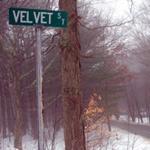 velvet_st