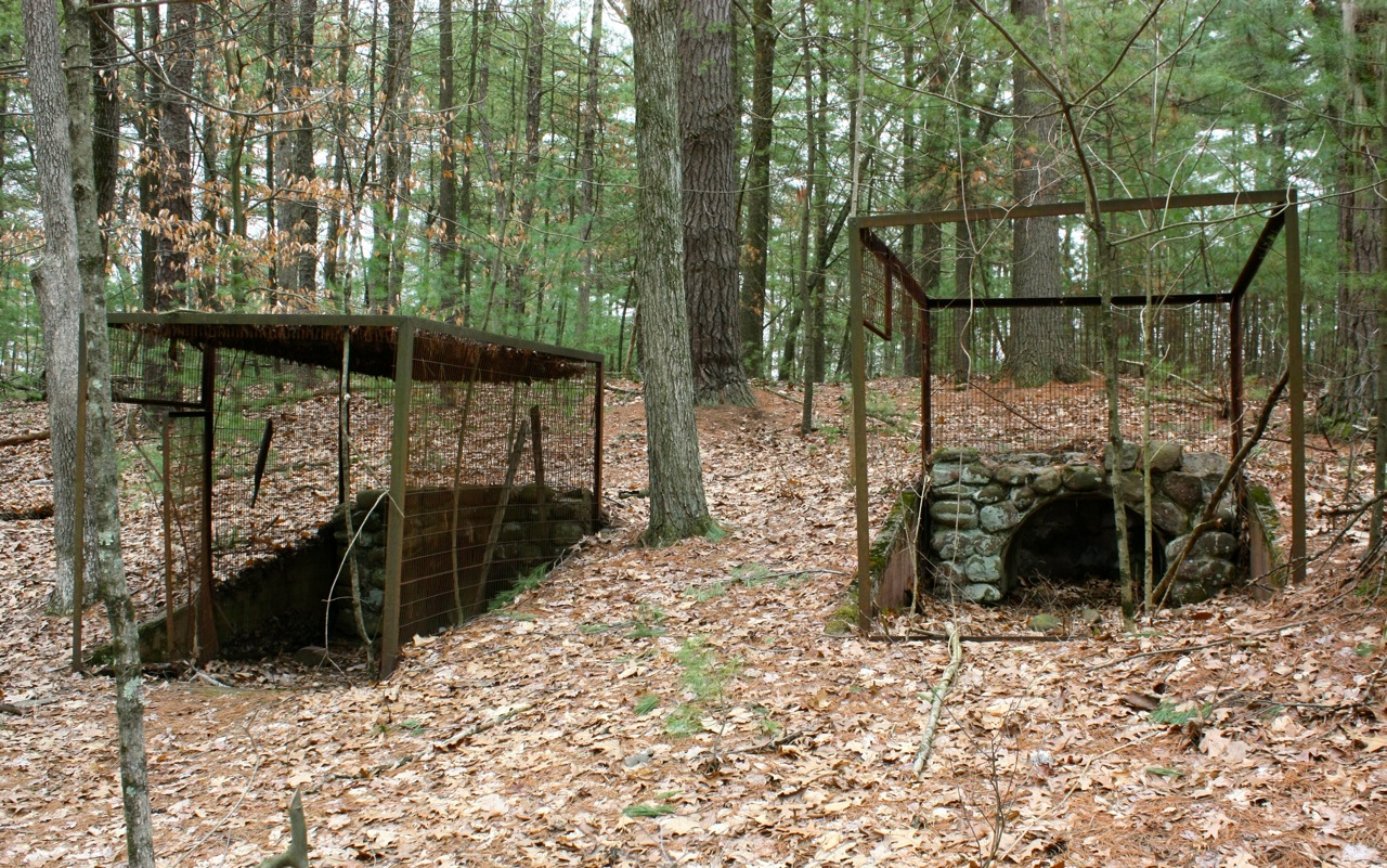 The Ed Story Over Decades All Manner Of Home Settlement And Structure Has Been Swallowed Up By Connecticut S Woodlands From City State Park